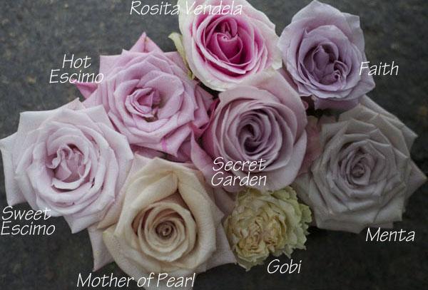 Pink and Blush credit: flirtyfleurs.com